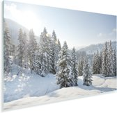De zon schijnt op de besneeuwde bomen bij een winterlandschap Plexiglas 60x40 cm - Foto print op Glas (Plexiglas wanddecoratie)