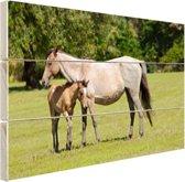 FotoCadeau.nl - Moeder en veulen Hout 80x60 cm - Foto print op Hout (Wanddecoratie)