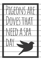 Pigeons Are Doves That Need a Spa Day Journal