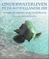 Onderwaterleven in de Middellandse zee