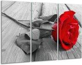 Canvas schilderij Roos | Rood, Grijs | 120x80cm 3Luik