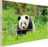 Grote panda in het gras Hout 80x60 cm - Foto print op Hout (Wanddecoratie)