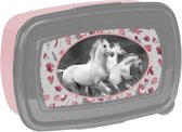 Animal Pictures Witte Paarden - Lunchbox - 18,5 x 13 cm - Multi