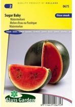 Sluis Garden - Watermeloen Sugar Baby