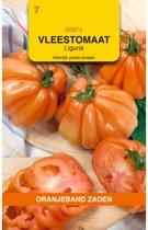 Oranjeband Zaden Vleestomaat Liguria