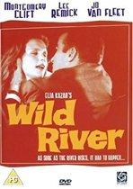 Wild River (import) (dvd)