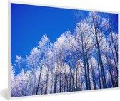 Foto in lijst - Besneeuwde bomen in het Nationaal park Santa Fe in Panama fotolijst wit 60x40 cm - Poster in lijst (Wanddecoratie woonkamer / slaapkamer)
