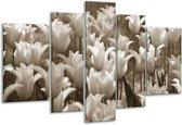 Glas schilderij Tulpen, Bloemen | Sepia | 170x100cm 5Luik | Foto print op Glas |  F006837
