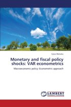 Monetary and Fiscal Policy Shocks