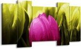 Canvas schilderij Tulp   Roze, Groen   120x65 5Luik