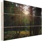 Doorbrekende zon in het Nationaal park Sierra de Guadarrama in Spanje Vurenhout met planken 120x80 cm - Foto print op Hout (Wanddecoratie)