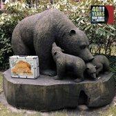 40 Years Bear Cd Dvd