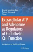 Extracellular ATP and adenosine as regulators of endothelial cell function