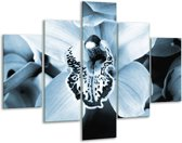 Glas schilderij Bloem | Blauw, Wit | 100x70cm 5Luik | Foto print op Glas |  F006654