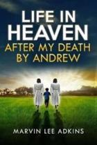 Life in Heaven After My Death by Andrew