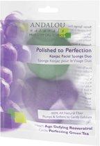Andalou Naturals Polished to Perfection Konjac Facial Sponge Duo
