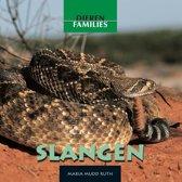 Dierenfamilies - Slangen