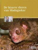 De Bizarre Dieren Van Madagaskar
