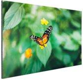 Vlinder op bloem Aluminium 90x60 cm - Foto print op Aluminium (metaal wanddecoratie)