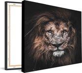 Canvas Lion Scar |  60 x 60 cm | Schurk Design