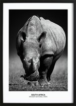 Rhino Poster (21x29,7cm) - Natuur - Poster - Print - Wallified