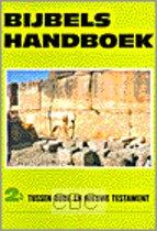 Bijbels handboek