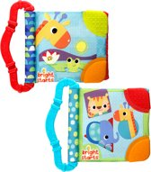 Bright Starts Teethe & Read Toy