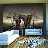 Fotobehang - Stad van olifanten , zwart wit , 5 maten