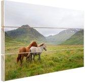 Paarden in heuvelgebied Hout 80x60 cm - Foto print op Hout (Wanddecoratie)