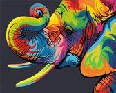 Schilder op Nummer Regenboog Olifant afm: 16,5x13 cm