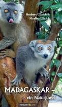 Madagaskar - Ein Naturjuwel