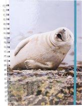 The Comedy Wildlife Notitieboek A4 Zeehond