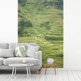 Fotobehang vinyl - De oude Rijstterrassen van Banaue in Azië breedte 215 cm x hoogte 320 cm - Foto print op behang (in 7 formaten beschikbaar)
