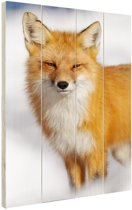 Rode vos close-up Hout 120x160 cm - Foto print op Hout (Wanddecoratie) XXL / Groot formaat!