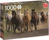 Een Groep Paarden Premium Quality - Puzzel 1000 stukjes