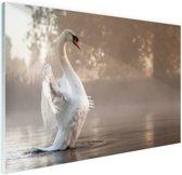 Zwaan in mistig meer Glas 60x40 cm - Foto print op Glas (Plexiglas wanddecoratie)