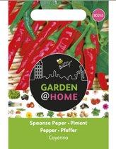 Garden@Home Peper Cayenne long slim