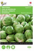 Spruitkool Topline F1 hybride - Brassica oleracea - set van 4 stuks