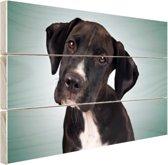 Lieve zwart-witte hond Hout 30x20 cm - Foto print op Hout (Wanddecoratie)