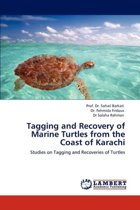Tagging and Recovery of Marine Turtles from the Coast of Karachi