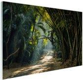 Rijen bamboe in Azie Glas 120x80 cm - Foto print op Glas (Plexiglas wanddecoratie)