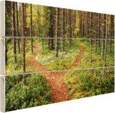 Een kruispunt in het bos Hout 30x20 cm - klein - Foto print op Hout (Wanddecoratie)