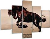 Glasschilderij Paard | Bruin, Grijs, Zwart | 100x70cm 5Luik | Foto print op Glas |  F002669