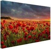 Klaprozen veld bij zonsondergang Canvas 30x20 cm - klein - Foto print op Canvas schilderij (Wanddecoratie woonkamer / slaapkamer) / Bloemen Canvas Schilderijen