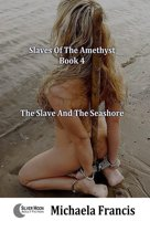 The Slave And The Seashore (Order Of The Amethyst Book 4)