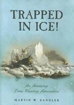 Trapped in Ice!