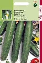 Hortitops Zaden - Komkommers Chinese Slangen