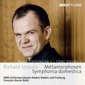 Symphonia Domestica Metarmophosen