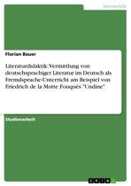 Literaturdidaktik: Vermittlung von deutschsprachiger Literatur im Deutsch als Fremdsprache-Unterricht am Beispiel von Friedrich de la Motte Fouqués 'Undine'