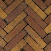 60 stuks! Art brick ruijsd gl/br 5x20x6.5 cm Gardenlux